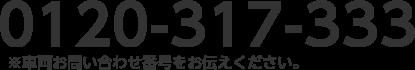0120-317-333